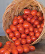 Tomato, Napa Grape Hybrid, , large