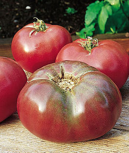 Tomato, Cherokee Purple Heirloom Organic, , large
