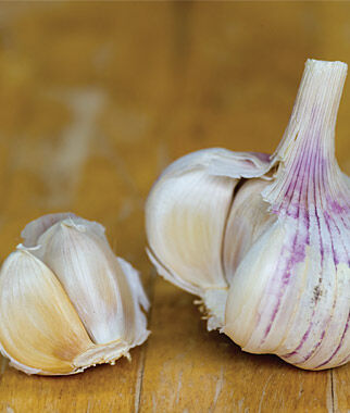 Garlic, Shilla, , large