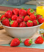 Strawberry, Toscana, , large