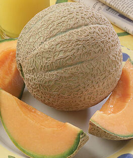 Cantaloupe, Hearts Of Gold Organic, , large
