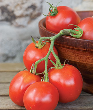 Tomato, Stupice 1 Pkt. (25 seeds), Heirloom Tomatoes, Heirloom Tomato Seeds, Heirloom Seeds, Heirloom Tomato Plants, Tomato Seeds