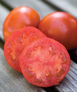 Tomato, Sweet Seedless Hybrid, , large