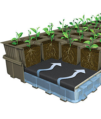 32 XL Cell Self-Watering Eco Friendly Ultimate Growing System, , large