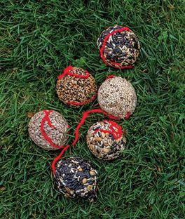 Bird Seed Holiday Balls , , large