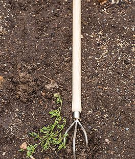 Raised Cultivator, , large