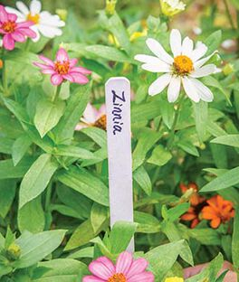 Plant and Row Tags, , large