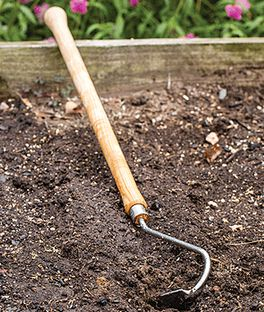 Raised Bed Hoe, , large