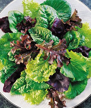 Mesclun, Sweet Salad Mix, , large