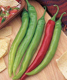 Pepper, Hot, Salsa Delight Hybrid, , large