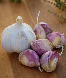 Garlic, Music, , large