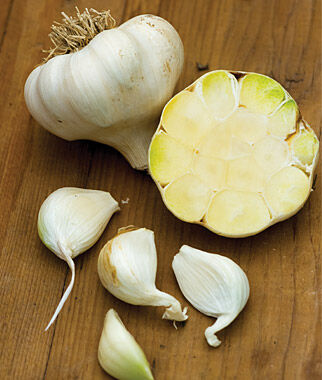 Garlic, Blanco Piacenza, , large