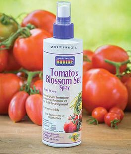 Tomato & Vegetable  Blossom Set Spray, , large