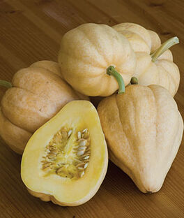 Squash, Thelma Sanders Sweet Potato, , large