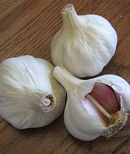 Garlic, Spanish Benitee, , large