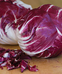 Radicchio, Chicory Red Verona, , large