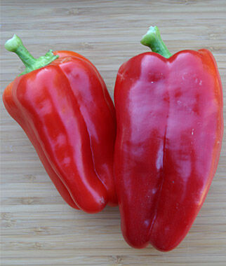 Pepper, Sweet, Cabernet Hybrid, , large