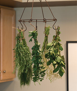 Herb & Flower Drying Rack Kit, Sage Seeds, Sage Plants, Sage, Garden Sage, Herb Seeds, Herb Plants, Herbs, Garden Seed, Herb Garden