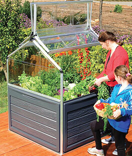 Plant Inn Snap-N-Grow Greenhouse, , large