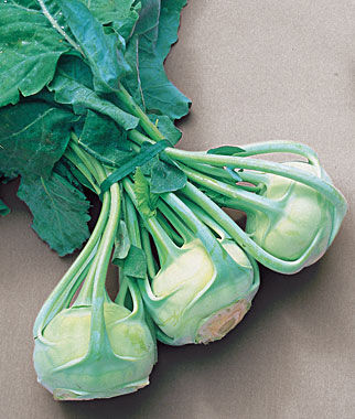 Kohlrabi, Early White Vienna, , large