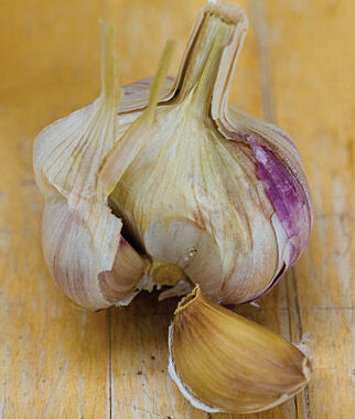 Garlic, Viola Francese, , large