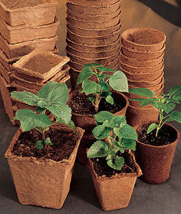"Biodegradable 3"" Round Fiber Pots, , large"