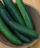 Cucumber, Sweet Success Hybrid, , large