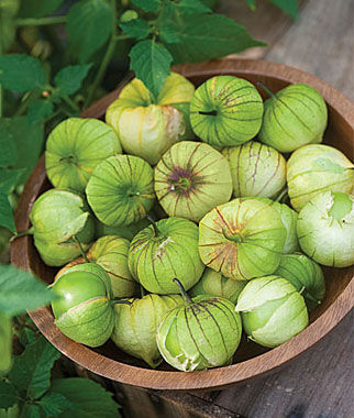 Tomatillo, Green Organic, , large