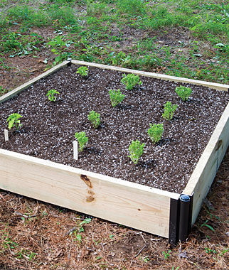Single Level Complete Cedar Raised Bed , , large