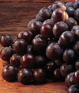 Grape, Concord, , large