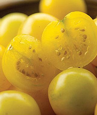 Tomato, Snow White 1 Pkt. (25 seeds), Cherry Tomato Seeds, Currant Tomato Seeds, Grape Tomato Seeds, Cherry Tomato, Tomato Seeds
