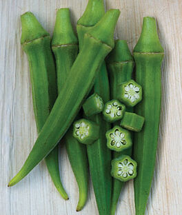 Okra, Chant Hybrid, , large