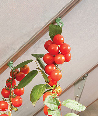 Plant Hangers for Palram Greenhouses, , large