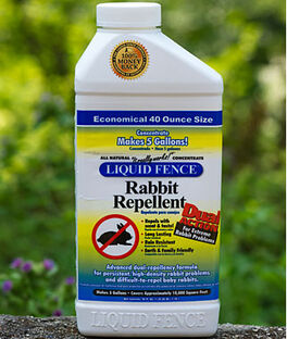 Rabbit Repellent - Concentrate, , large