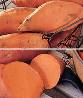 Sweet Potato Collection, , large