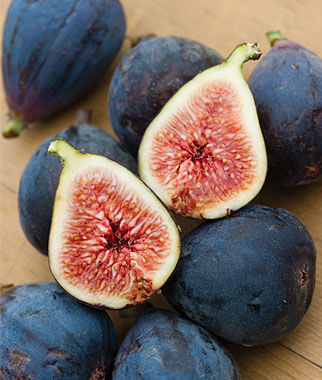 Fig, Black Mission, , large