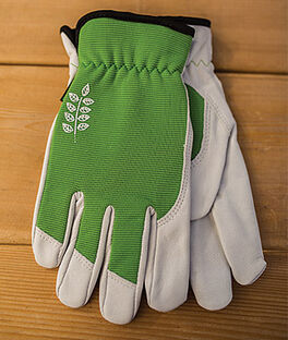 Women's Kobalt Goatskin Gloves - Green, , large