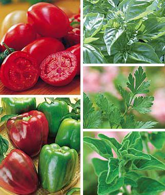 Patio Edible Plants Collection, , large