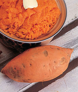 Sweet Potato, Vardaman, , large