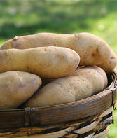 Potato, Princess Laratte, , large