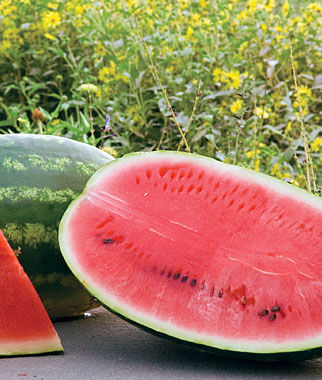 Watermelon, Allsweet Organic, , large