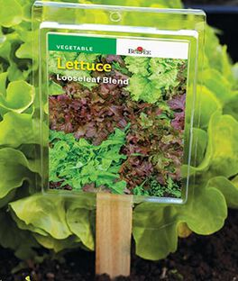 Plant ID Tags, , large
