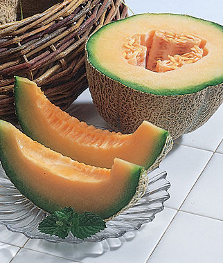 Burpees Hybrid Cantaloupe Seeds And Plants Fruit And
