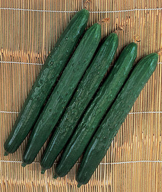 Cucumber, Suyo Long Organic, , large