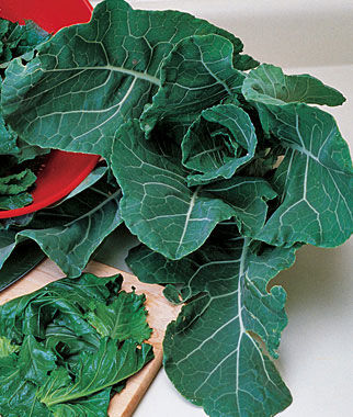 Collards, Georgia, , large