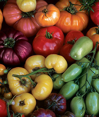 Tomato, Rainbow Blend Heirloom, , large