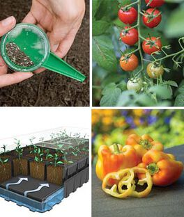 Introduction to Vegetable Gardening Gift Set, , large