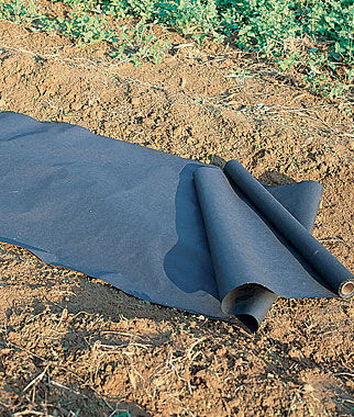 Planters Paper Mulch 2' X 50', , large