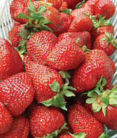 Strawberry, Albion, , large