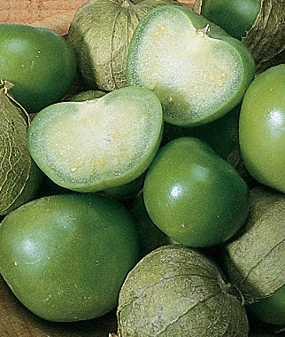 Tomatillo, Toma Verde, , large